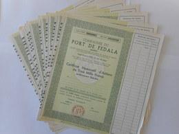 LOT De 10 Cie Du PORT De FEDALA             MOHAMMEDIA           MAROC - Afrique