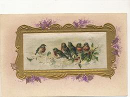Embossed Painted Silk Card . Oiseaux Rouge Gorge. Carte Peinte En Soie - Ansichtskarten