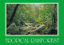 1 AK Australia * Regenwald In Nord Queensland * World Heritage Rainforest In Australia - Seit 1987 UNESCO Weltnaturerbe - Autres