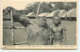HAUTE-SANGA - Gorille Tué Au Village Bakoros De Nola - Congo - Brazzaville