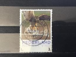 Nederland / The Netherlands - Herfstvogels, Kiekendief 2017 - Periode 2013-... (Willem-Alexander)