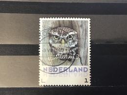 Nederland / The Netherlands - Herfstvogels, Steenuil 2017 - Periode 2013-... (Willem-Alexander)