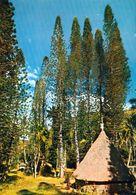 1 AK New Caledonia Nouvelle Caledonie * Traditionelles Haus An Der Ostküste - East Coast Traditional Hut * IRIS Karte * - Neukaledonien