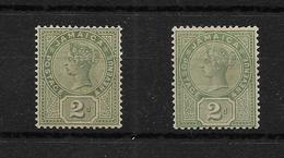 Jamaica 1889 QV 2d Green Both Shades MNH & LMM (7507) - Jamaica (...-1961)