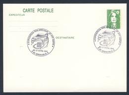 France Rep. Française 1991 Card / Karte / Carte - Exposition Philatelique UP.PTT, Isere / Ausstellung - Treinen