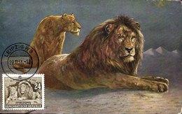 43069 Germany Ddr, Maximum 1953  Zoo Leipzig,  Lion  Lowe,   Mi-397 - [6] République Démocratique