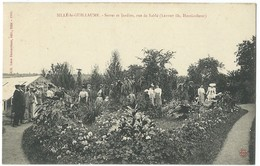 SILLE LE GUILLAUME    CARTE BESNARDEAU THEME JARDINAGE JARDIN TRES   BELLE ANIMATION - Sille Le Guillaume