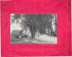 THOISSEY - 01 - Levée Du Port - Roulotte A Gauche - NANT5/BES - - Other Municipalities