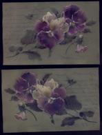 Art FLOWERS FLEURS Greeting Postcard 1908 ( Hand Paint On Transparent Paper /Peinture à La Main Sur Papier Transparent ) - Flores