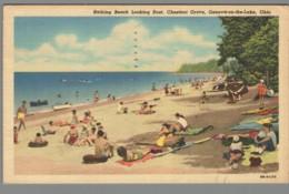 CPSM USA - Ohio - Geneva On The Lake - Bathing Beach Looking East - Chestnut Grove - Etats-Unis