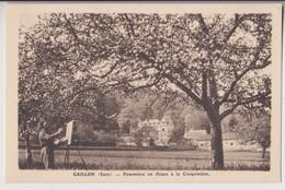GAILLON (27) : POMMIERS EN FLEURS A LA CREQUINIERE - UN PEINTRE CROQUE LE PAYSAGE ET LE VERGER - 2 SCANS - - France
