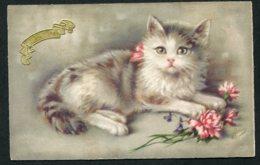 11445  CPA  Anniversaire  Chat Et Fleurs - Geburtstag