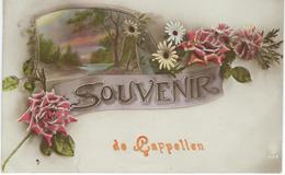 Souvenir De CAPPELLEN - KAPELLEN - Cachet De La Poste 1923 - Kapellen