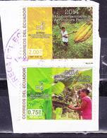 ECUADOR 2014 COVER PIECE CACAO & BANANA INTERNATIONAL YEAR OF FAMILY AGRICULTURE - Ecuador
