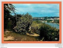 A545 / 349 49 - CHAMPTOCEAUX Jardin De Champalud - Francia