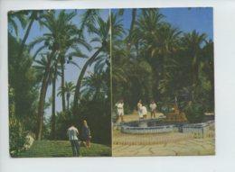 A Saisir - Espagne - Multivues - Elche - Non Voyagee - Voir Photos - Autres