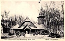 AUSTRIA / WIEN - 1910 : ERSTE INTERNATIONALE JAGD AUSSTELLUNG / EXPOSITION De CHASSE / HUNTING EXHIBITION (aa613) - Caccia