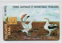 50 UNITES - PARADE NUPTIALE D'ALBATROS - TAAF - Franz. Süd- Und Antarktisgebiete