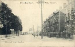 Molenbeek : Chaussée De Gand : Château Et Villas HAESAERT - St-Jans-Molenbeek - Molenbeek-St-Jean