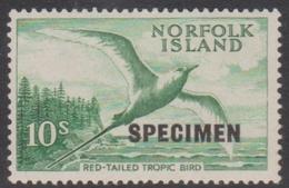 Norfolk Island ASC 41S 1961 Tropi Bird SPECIMEN Bottom Right, Mint Never Hinged - Norfolk Island