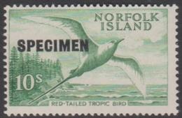 Norfolk Island ASC 41S 1961 Tropic Bird SPECIMEN Top Left, Mint Never Hinged - Norfolk Island