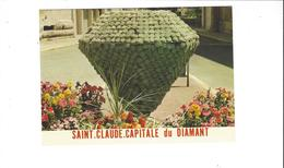 SAINT CLAUDE CAPITALE DU DIAMANT    LE DIAMANT FLEURI  ***** A  SAISIR  ****** - Saint Claude