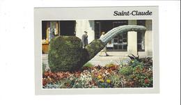 SAINT CLAUDE  LAPIPE FLORALE   ***** A  SAISIR  ****** - Saint Claude