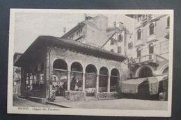 Cartolina Treviso Loggia Dei Cavalieri - Non Viaggiata - Treviso