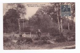 91 BRUNOY La Forêt De Sénart La Mare Noire VOIR ZOOM Homme Et Enfants Bourdon Phot édit Brunoy - Brunoy