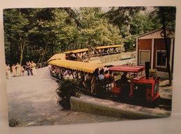 Terme Bacedasco Castell' Arquato Timbro Conchiglia Treno Cartolina 1987 - Italy
