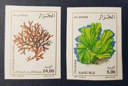 ALGERIE ALGERIA 2003 YT 1347 /  - IMPERF IMPERFORATE ND NON DENTELE - ALGUES MARINES MARINE FLORE PLANTS - RARE MNH - Other