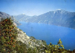Lago Di Garda - Monte Baldo - Formato Grande Viaggiata – E 10 - Cartoline