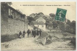 NOGENT Panorama Htes Vignes, USINE ROYER Coutellerie - Nogent-en-Bassigny