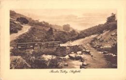 R180749 Rivelin Valley. Sheffield. 1910 - Cartes Postales