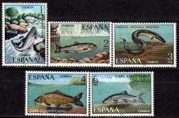 España. Spain. 1977. Fauna Hispanica. Peces. Fish - 1971-80 Ungebraucht