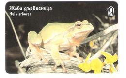 Bulgaria - Mobika - Frog - Frosch - Animal - Hyla Arborea - Bulgarien