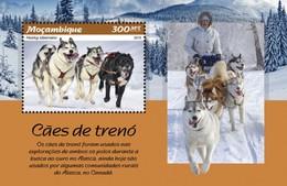 Mozambique - Postfris / MNH - Sheet Sledehonden 2019 - Mozambique