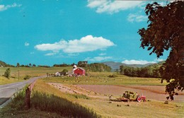 CP - A Tropical Vermont Farm Scene  -  Non Ecrite - Etats-Unis