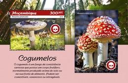 Mozambique - Postfris / MNH - Sheet Paddenstoelen 2019 - Mozambique