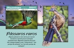 Mozambique - Postfris / MNH - Sheet Vogels 2019 - Mozambique