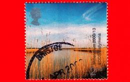 INGHILTERRA - GB - GRAN BRETAGNA - 2000 - 1 Progetto Del Millennio - Vita E Di Cuore - Reed Beds, River Braid (ECOS, Bal - 1952-.... (Elizabeth II)