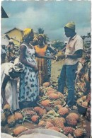 Afrique Africa Marchandes D'ananas Pine-apple Sellers - Afrique