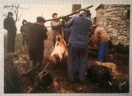 Lot De 15 Cartes Postales / TUE COCHON Tuaille Du Porc - Farmers