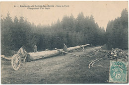 SALINS LES BAINS - Dans La Forêt, Chargement D'un Sapin, Bucherons - Autres Communes