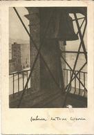 CARBONIA - LA TORRE LITTORIA - Cartolina Pittorica - (rif. F79) - Carbonia