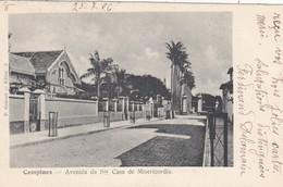 Campinas - Avenida De Santa Casa De Misericordia - Brésil