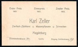 B6519 - Magdeburg - Karl Zeller - Fischzucht - Visitenkarte - Otto Happel - Cartes De Visite