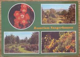 Rosarium SANGERHAUSEN Grosste Rosensammlung Der Welt - DDR  Vg  G2 - Wernigerode