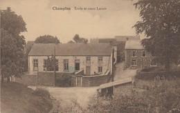 Champlon ,(Ardenne )Tennville ,  Ecole Et Vieux Lavoir , ( Lavandière ) RARE - Tenneville