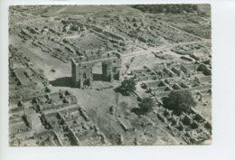 Piece D Antan - Maroc - Volubilis - Vue Aerienne Des Ruines - Maroc